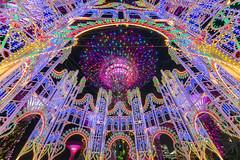 Christmas Wonderland [Explored] (BP Chua) Tags: singapore christmas decoration colours colourful landscape night nikon d800e wideangle supertree design wonderland gbtb gardensbythebay beautiful christmaswonderlandsg platinumheartaward
