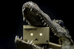 Danbo Gator Snapped! (Stephen Reed) Tags: alligator fluffy wallydanbo d7000 danbo nikon lightroomcc photoshopcc