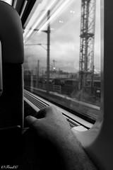 On rail.... (Frd.C) Tags: hand main train rail think speed flou bokeh sony