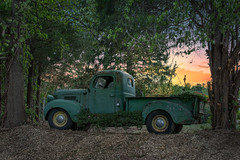 Truck in the sunset of its life. (Trotter Jay) Tags: thefarmatcarterhill farm oldtruck oldpickuptruck vintagetruck antiquetruck antiquepickuptruck marlboroughct marlborough trees sunset warmsunset nikond7100 antique