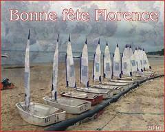 flofete 2016 (roupiedesinge) Tags: fete florence france aquitaine