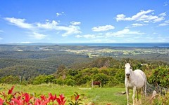 663B Little Forest Road, Little Forest NSW