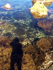 """At Autumn Shore"" (wake_himi) Tags: autumn shore 秋 海 秋田 男鹿 釣り 日本海 eging 磯 japanesesea 潜り岩"