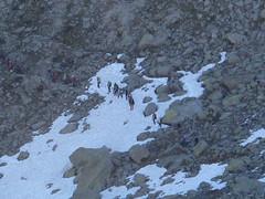 Grand_Parcours_Alpinisme_Chamonix-Edition_2014_ (32)