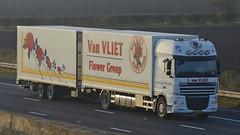 BZ-SJ-28 (panmanstan) Tags: flower truck wagon motorway yorkshire transport lorry commercial vehicle freight sandholme m62 daf xf haulage hgv drawbar