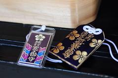 (theCarol) Tags: flowers japan plum  fukuoka ume     dazaifu tenmangu