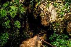 Entrada (Felipe Valim Fotografia) Tags: foto vale viagem ribeira valedoribeira ilhacomprida cavernadodiabo cajati caneneia