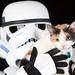 Stormtrooper + Pistachio