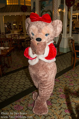 ShellieMay, The Disney Bear