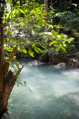 Thailand - Erawan Waterfalls National Park (Cyrielle Beaubois) Tags: park travel light sunlight water river thailand asia turquoise branches thalande national southeast erawan 2015 canoneos5dmarkii cyriellebeaubois