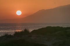 350 (Rafi Moreno) Tags: atardecer sunset paisaje nature naturaleza landscape airelibre mediterraneo andalucía marbella españa spain málaga cabopino otoño sun sol contraluz canon proyecto365fotos 365proyect orange dunasdecabopino mar beach playa luz
