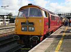 D1015 at Plymouth Sept 2016 (Ado Griff) Tags: d1015 maybach westernchampion class52 pathfindertours thecornishman dtg plymouthstation dieselhydraulic