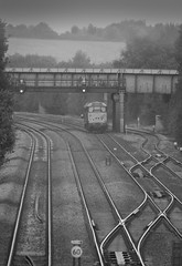 DCR Class 31/4 no 31452 trundles light engine past Tupton on 11-10-2016 with a move from Leicester to Grosmont (kevaruka) Tags: tuptonbridge tupton derbyshire countryside grim dull drearyday rainyday rain england brush britishrail networkrail bw blackwhite contrast composition locomotive class31 150 dmu trees railway trains train transport canon canoneos5dmk3 canon5dmk3 canonef100400f4556l 5d3 5diii 5d 5dmk3 boobs milf sexy wife girlfriend lol