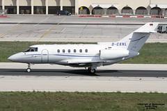 D-CXNL LMML 01-11-2016 (Burmarrad (Mark) Camenzuli) Tags: airline jetair flug aircraft raytheon hawker 800xp registration dcxnl cn 258544 lmml 01112016