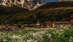 Hidden Gem (BeNowMeHere) Tags: ifttt 500px trip alps benowmehere bonnevalsurarc flowers france hiddengem landscape mountains nature village travel