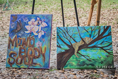 Mind, Body and Soul Festival 2016 (AJ Hége Photography) Tags: ajhégephotography ajhegephotography 2016 event festival canon 60d florida centralflorida furtographer fun newsource article community talent maddoxranch lakeland mindbodysoul love outdoor art day daytime travel explore interesting paintings artwork artist beautiful