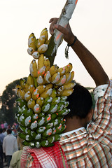 Kolkata celebrates Chhath Pooja, 2016 : One of the most ancient Hindu rituals for the Sun God in India. (biswarupsarkar72) Tags: chhath chhathpooja chhathpoojainkolkata religiousindia incredibleindia chhathpooja2016 hindurituals hinduism sungod worshipingofsungod worship rituals ritualsofchhath