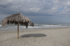 Io voto NO (Alberto Cameroni) Tags: toscana versilia mare spiaggia sera ppp pasolini leica leicaxtyp113 lidodicamaiore no