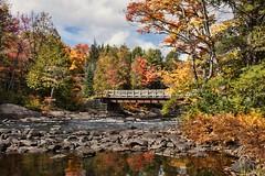 Oxtongue River Bridge (Jolynn's Photography) Tags: landscape rocks trees autumn leaves water river bridge scenery outdoors