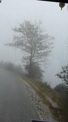 Μετεωρα P1260841 (omirou56) Tags: 169ratio panasoniclumixdmctz40 μετεωρα ελλαδα δεντρο δρομοσ ομιχλη ελλασ θεσσαλία fog hellas greece tree street thessalia meteora