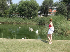 Me in Rusanda (L.L.V.) Tags: me photographer lake rusanda melenci swans birds nature beautiful tourism travel destination serbia srbija vojvodina banat