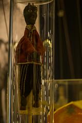 DSC00599 (gabriella.lavati) Tags: sony sonyalpha a6000 bokeh vintage carl zeiss rollei germanyversion planar 50mmf18 manualfocus manual mflens hungary budapest nprajzimzeum