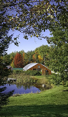 20161011_104432 When it was still fall (MiFleur...Happy New Year 2017) Tags: greenhouse agriculture scenery landscape reflectionm pond fall autumn colors seasons automne ferme rural countryside homesteading ecovillage citeecologiquenh colebrook nh cooscounty northcountry paysage womanphotographer amateur cellphone niksoftware relaxation étang reflets serres ecologique francais