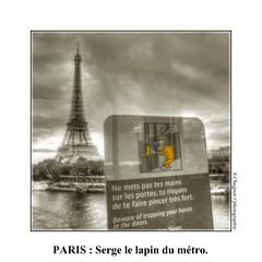 CIMG4178 (cowsandgirl71) Tags: casio paris photomatix toureiffel lapin jaune seine eau mtro