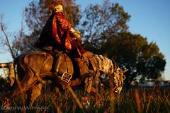 DSC01772 (IGypsyWoman) Tags: threea blindcowboy sunrise toyphotography