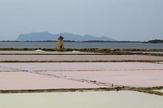 Saline di Marsala (CaresMa) Tags: sicily saline marsala