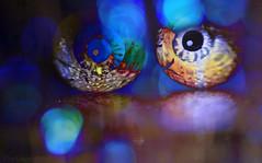 """You are being watched ......."" (Elisafox22 slowly beating the Shingles!) Tags: elisafox22 sony ilca77m2 100mmf28 macro macrolens telemacro macromondays hmm eyes eyeballs stilllife indoors chocolate maltesers foil dark bokeh bloodred blues halloween spooky watchingyou postprocessing elisaliddell©2016 spookyandfrightful"