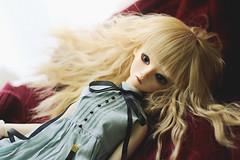 AIMG_0953 (Tinn Chun) Tags: bjd doll bluefairy tinyfairy robin