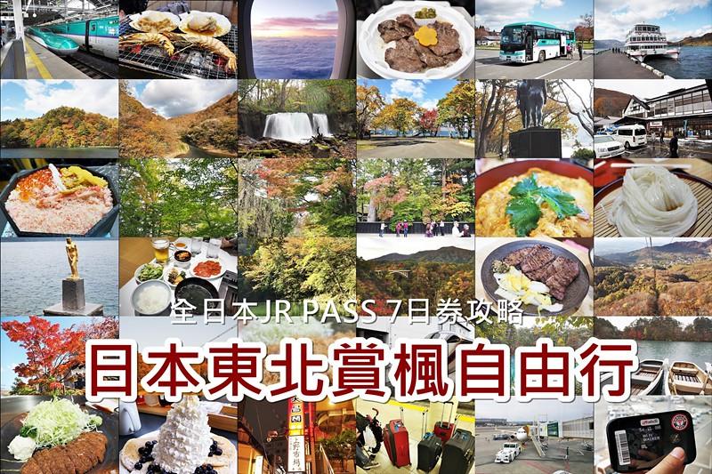 日本東北賞楓