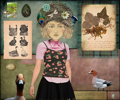 Ana Penelope or Wigeonette (Chris' Wings) Tags: digitalart vintagegraphics birds eggs wigeons flowers nests