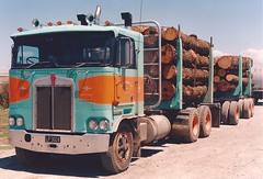 New Zealand KW (PAcarhauler) Tags: kw kenworth coe cabover semi truck