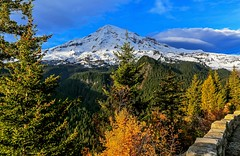 Autumn in Mt. Rainier National Park (Cole Chase Photography) Tags: autumn fall mtrainier washington pacificnorthwest canon eos5dmarkiii