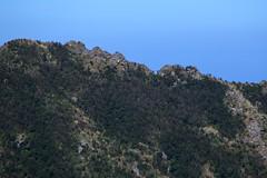 _MG_8440 (Len) Tags:    caoshan     ruifang newtaipeicity mountain banpingmountain    autumn   trekking hiking    jinguashi jiufen  6d shueijinjiou