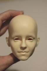 IMG_7983 (Sleep Owl) Tags: owlsminimee headsculpt