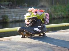 Footy Boot Flowers 1 (Thomas Kelly 48) Tags: leedsliverpoolcanal canal burscough gathurst panasonic lumix fz150 boot footyboot footybootflowers