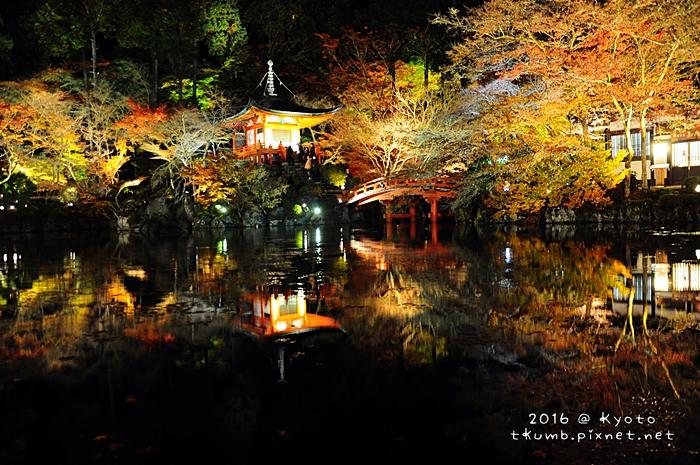 2016醍醐寺夜楓3.JPG