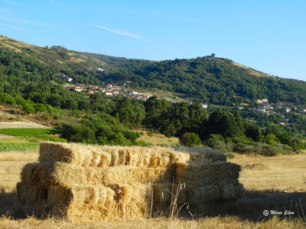 Águas Frias (Chaves) - ... os molhos de palha ... a Aldeia .. e o Castelo ...