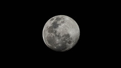 Full Moon above Brisbane (josselin.berger) Tags: original sky blackandwhite bw moon monochrome night lune stars noir space satellite brisbane fullmoon 300mm crater queensland planet fond toowong pleine lunaire australiaaustralian