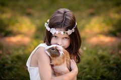 Guinea-pig (foto.evines) Tags: portrait pet love girl childhood fun outdoors guineapig kid moody child play closeness childphoto evines evinesfoto