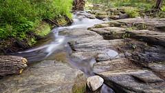 (goodgirlbetty) Tags: water pine creek canon river movement long exposure south filter 7d nd vegetation riparian ndx400