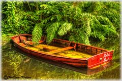032 Sprung-A-Leak (williamwalton001) Tags: boat green garden water nationaltrust dockbay