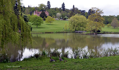 CHARTWELL HOUSE, KENT, CHURCHILL House (claude.lacourarie) Tags: park uk england castles kent spring unitedkingdom britain eu churchill winstonchurchill manor nationaltrust printemps palaces chartwell manoir cottages statelyhomes manorhouses