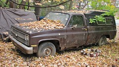 RUSTY 1982 CHEVY C-10 (richie 59) Tags: autumn usa ny newyork fall chevrolet overgrown leaves america truck outside us weeds junk rust gm unitedstates weekend sunday rusty pickup pickuptruck dirty hoarding vehicles faded chevy crap rusted shit hoard newyorkstate autos frontyard automobiles nys nystate dutchesscounty rustytruck generalmotors hudsonvalley abandonedproperty 2door 2015 rustedout motorvehicles junktruck fadedpaint c10 twodoor americantruck abandonedtruck midhudsonvalley customdeluxe dutchesscountyny midhudson rustychevy ustruck abandonedvehicles chevypickuptruck browntruck 2010s customdeluxe10 rustypickuptruck rustychevytruck junkvehicles richie59 townofwappinger 1980struck nov2015 townofwappingerny 1982chevyc10 nov12015 1982chevypickuptruck