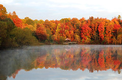 Autumn in the lake (On Explore 10/31/2015) (die Augen) Tags: autumn trees red sky lake fall fog clouds canon reflections pond colorful outdoor foggy maryland sl1
