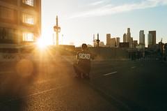 (lizzy.stardust) Tags: la dtla color film 35mm lomography losangeles ruggednraw sigmalens sunset sunflare