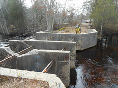 Westecunk Creek barrier (U. S. Fish and Wildlife Service - Northeast Region) Tags: newjersey oceancounty damremoval fishpassage protectingcommunities ebforsythenwr coastalresilience hurricanesandy hurricanesandyfws hurricanesandyproject37